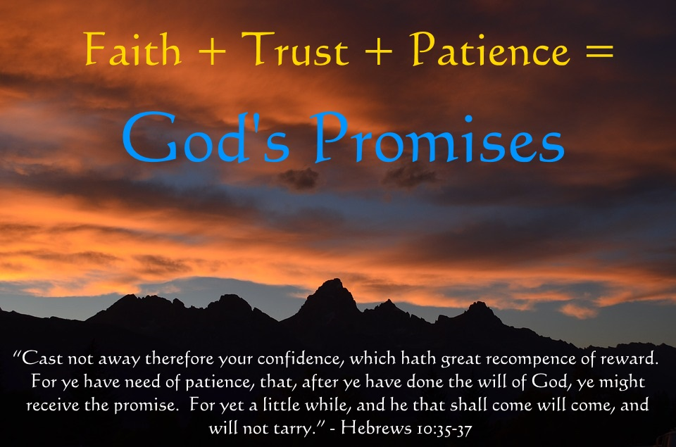 an analysis of a faith worth questioning in god we trust If we have faith, we will be obedient to god's word people who have been justified by faith (rom 5:1.